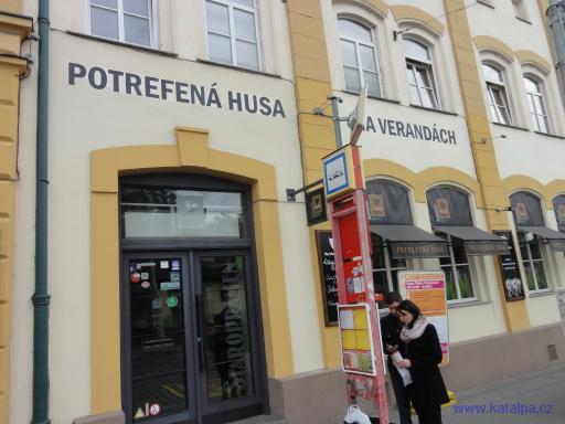 Restaurace Potrefená husa Na verandách - Praha Smíchov