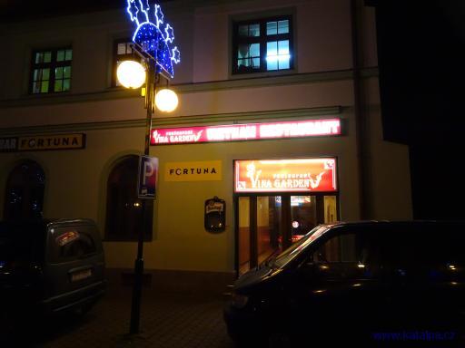 Restaurant Vina Garden - Bor u Tachova